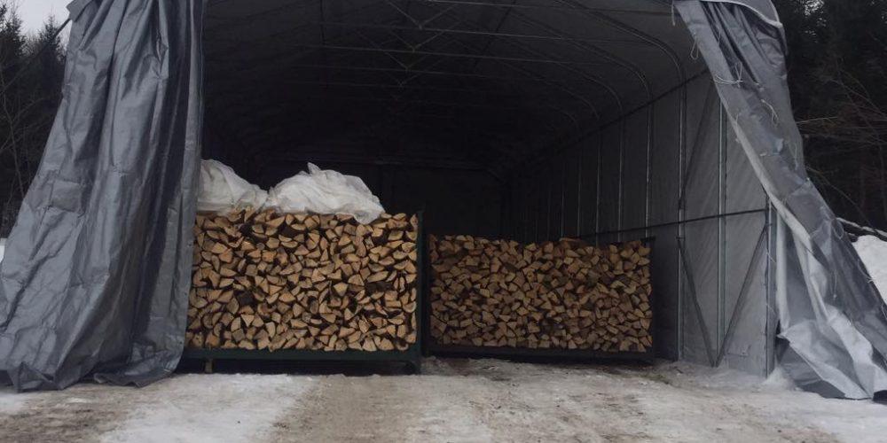 De l'amélioration pour une qualité de bois