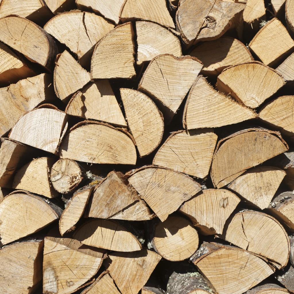 L 39 entreposer bois de chauffage vendre l - Coupe de bois de chauffage sur pied a vendre ...