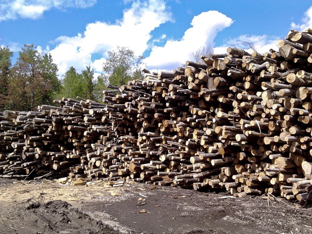 bois de chauffage mont tremblant